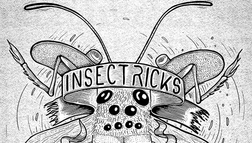 insectricks_1